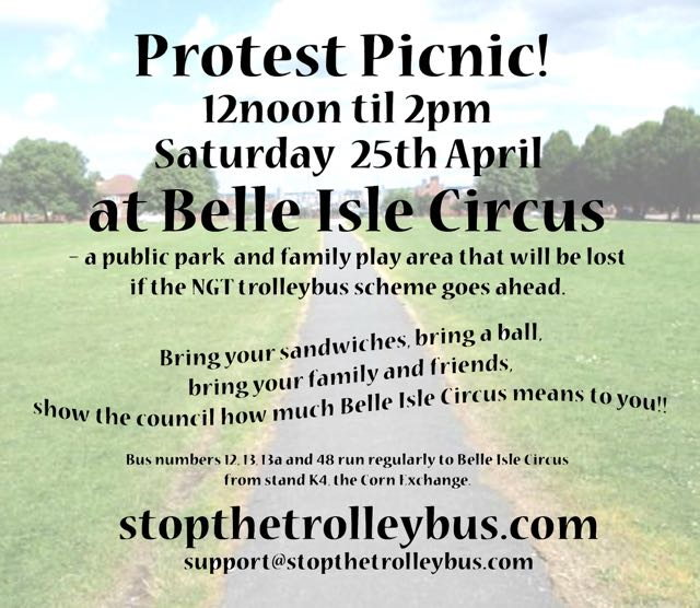 Belle Isle Circus Picnic A5 Flyer b